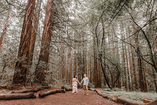 Redwoods Engagement Session | Joaquin Miller Park | Oakland, CA