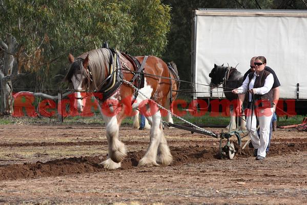2012 06 24 Vintage Plough Beverly