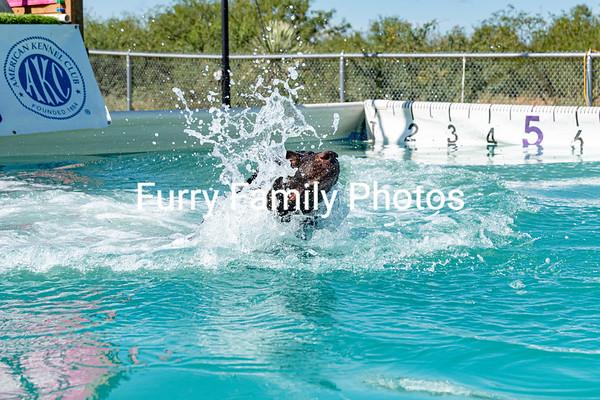 Splash 12