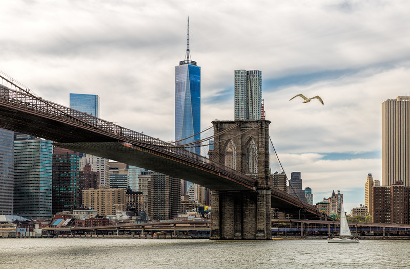Broolyn Bridge + Freedom Tower - Color-4.jpg