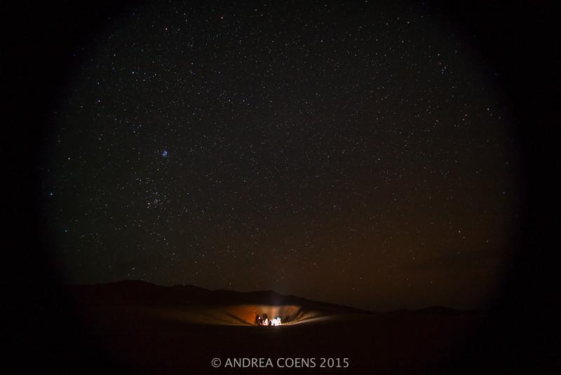 AndreaCoens-98.jpg