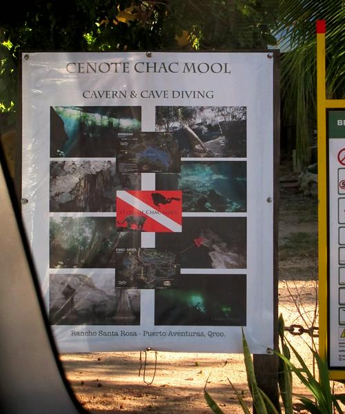 2014 Whale Shark - Cave Adventure-86.jpg