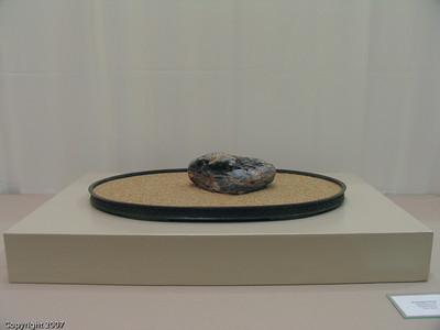 Suiseki Exhibits
