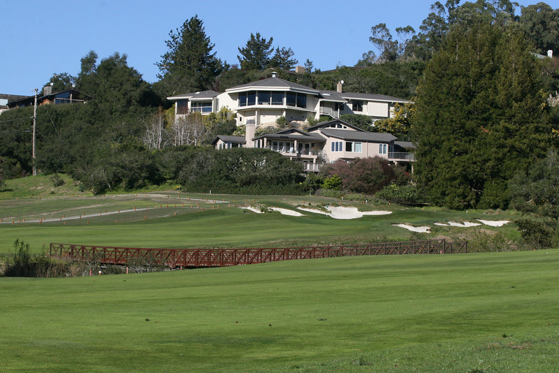 11 green and house 1.JPG