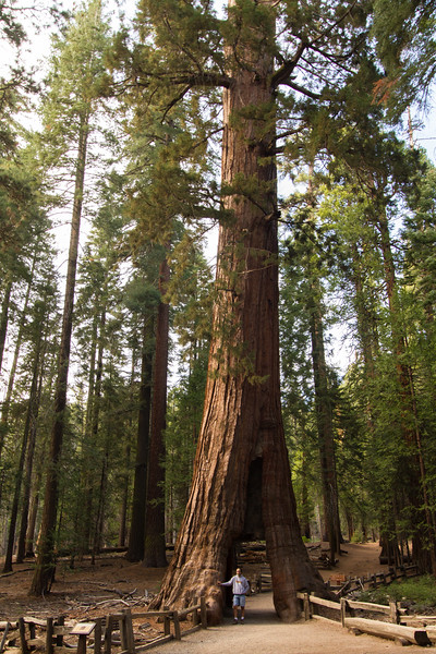 20150504-Yosemite-7D-IMG_6480.jpg