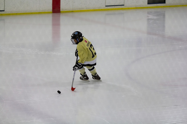 Game @ Twin Rinks 01/22/2012
