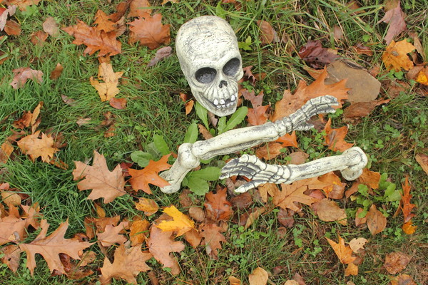 Quechee Gorge Haunted Hike, Village Event