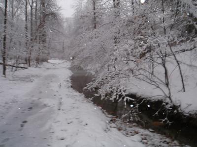 Winter 2009-10 Nature Pics