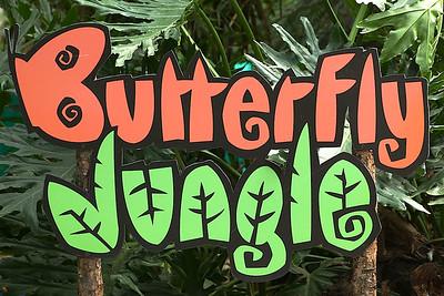 03-20-13 Butterfly Jungle