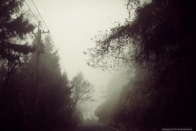 Diary | 兩周年快樂之忘憂森林沒有水