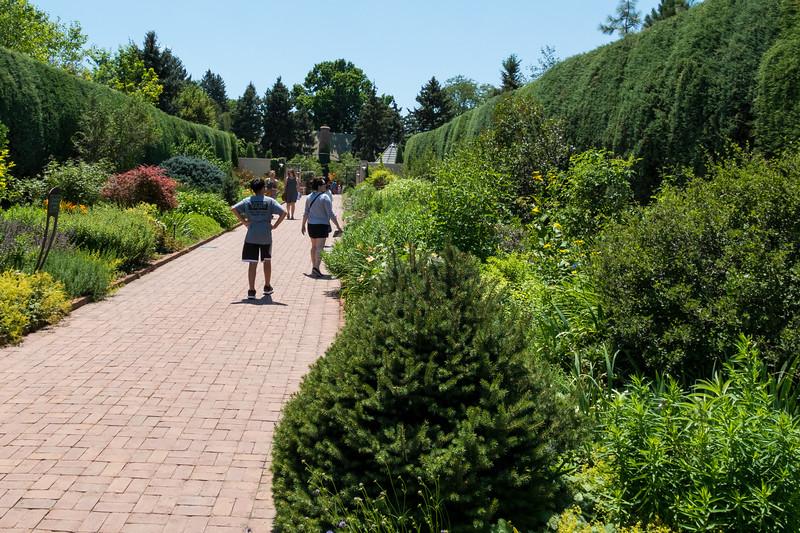 20190722_denver-botanical-garden_049.JPG