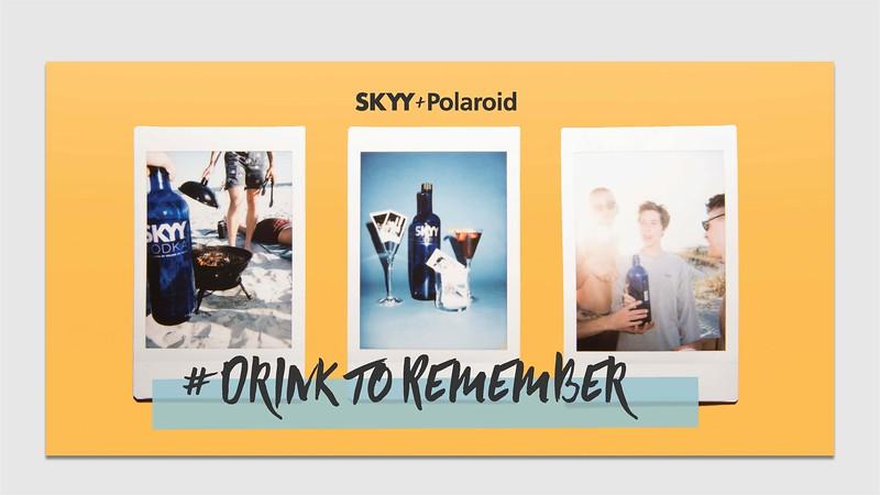SKYY Presentation_Page_08.jpg