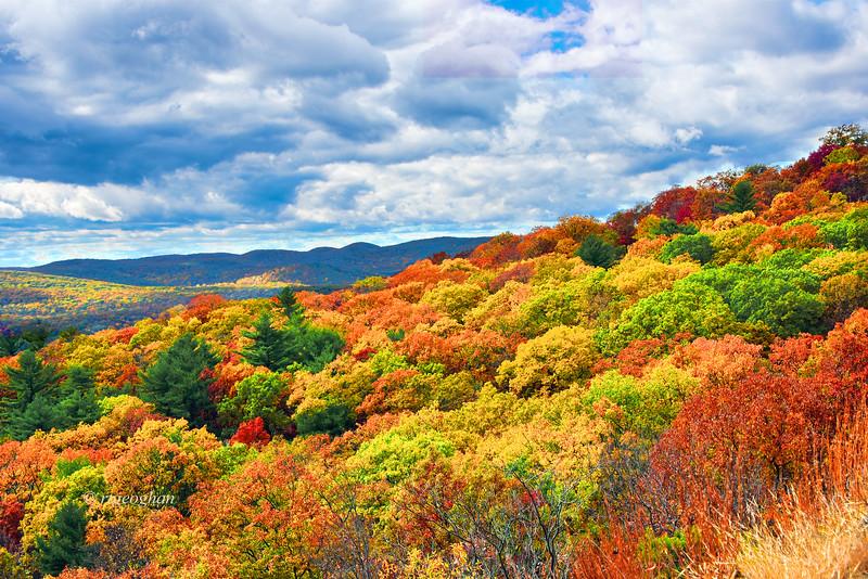 Bear Mountain Fall Foliage vista