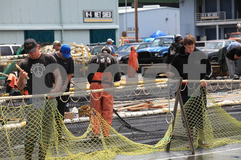 Salmon fishing boats at Fishermen's Terminal, Seattle.