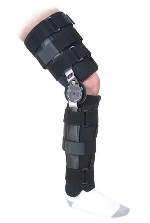 Original Knee