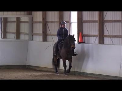 TSRC 2019-03-08 Wildfire Farm Video