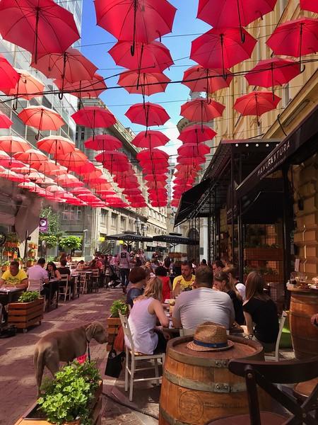 staying cool under the Belgrade summer sun