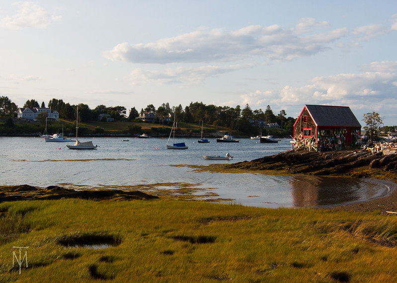 bailey_island_1708_0107-LR.jpg