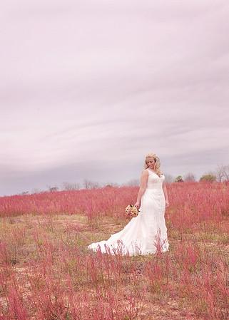 Brittany & David's Wedding