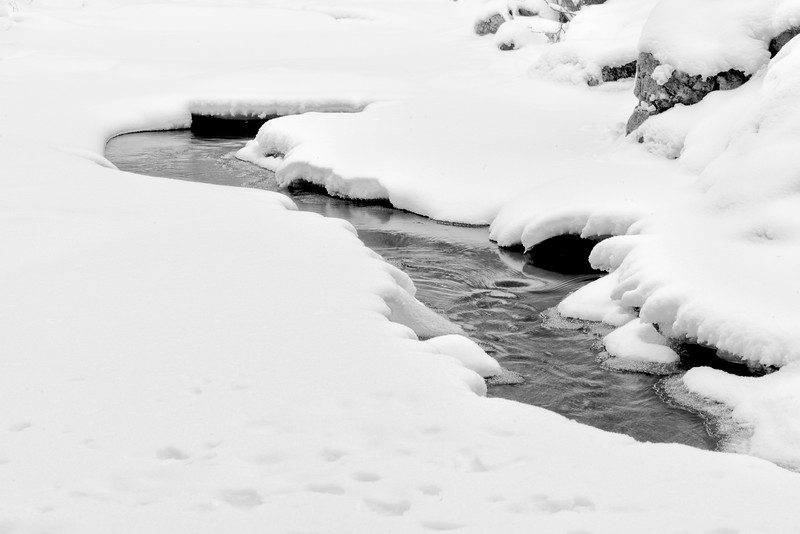 snow and water b&w_Jan 9-11_02.jpg