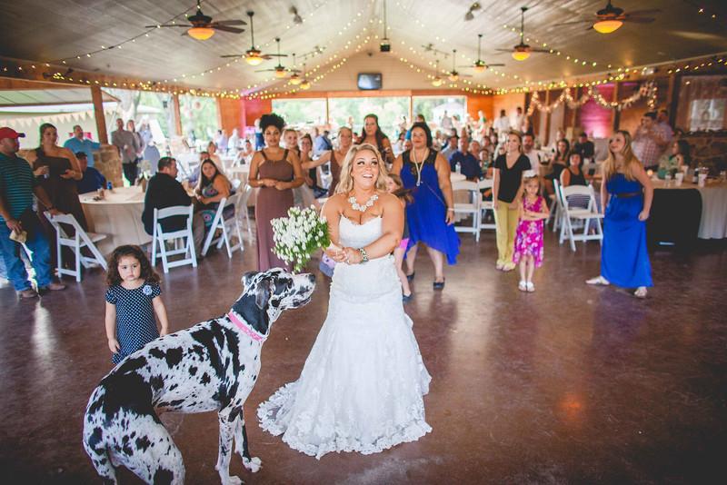 2014 09 14 Waddle Wedding - Reception-708.jpg