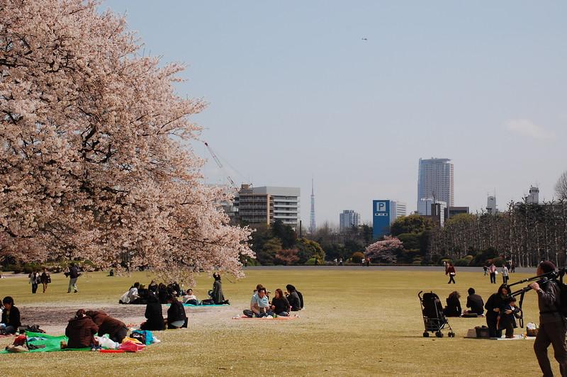 24-Japan07_1478.JPG