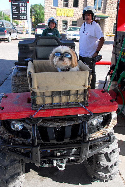9/9/07 – First thing in the morning Lisa and I went to gas our ATVs for the day. When we got there I found this little dog ready for the days ride. To keep the dust out of his eyes he was wearing goggles. It was amazing because he seemed perfectly comfortable with them. The owners were very proud when I asked if I could take his picture.