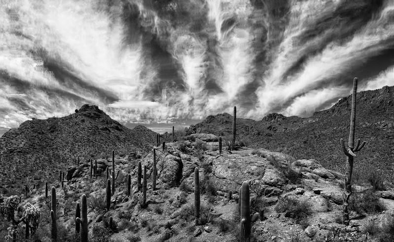 Tucson_17-593-Edit.jpg