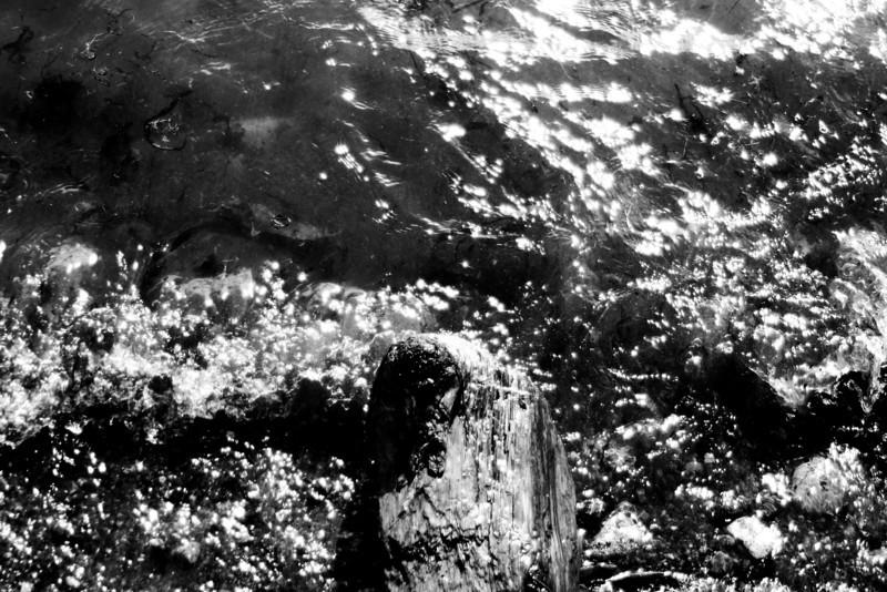 070705-003BW (Abstract; Driftwood, Rocks, Tide).jpg