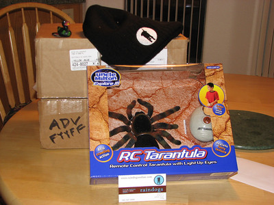 Gift Box from Raindog