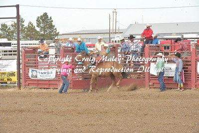 SADDLE BRONC PREF 7-9-2016