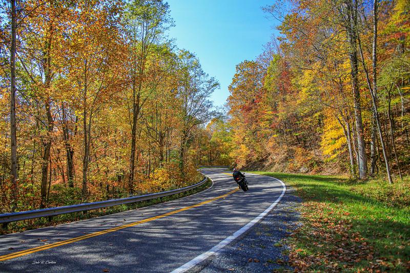 Racing Through Fall