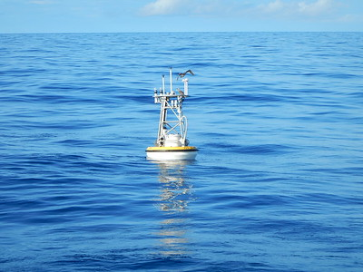 Ocean Climate Stations