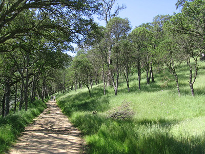 Mount Diablo - May 7, 2006