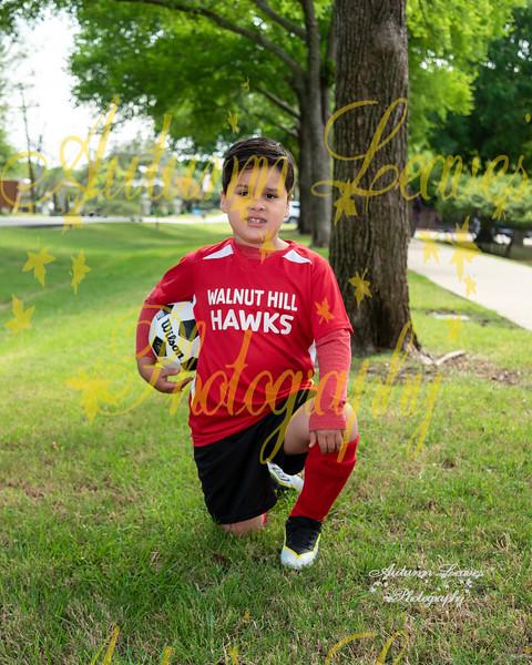 20210417 # S5 First Hawks