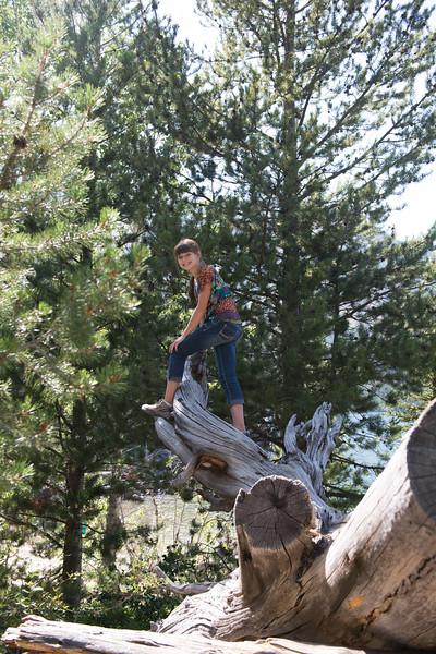 Teton National Park-23.jpg