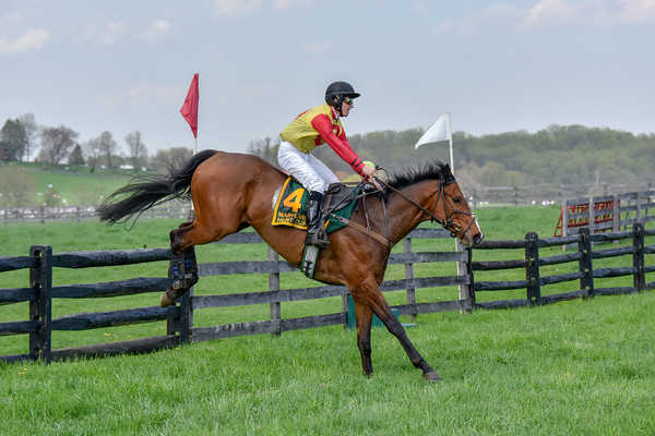 Maryland Hunt Cup 042818