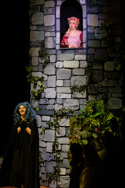 2018-03 Into the Woods Performance 1152.jpg