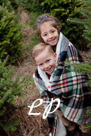Ringeis Christmas 2019