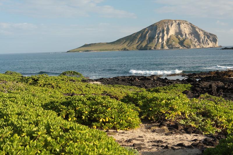 Rabbit Island, Hawaii.