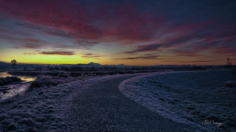 Frozen Path Web_Redo 2020