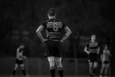 Rugby 2013