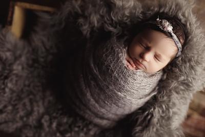 Hazelle - Newborn
