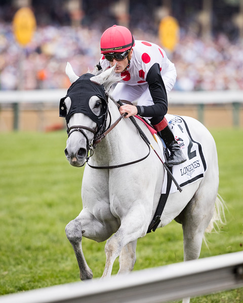 World Approval (Northern Afleet) wins the Dixie Stakes (G2) at Pimlico on 5.20.2017. Julien Leparoux up, Mark Casse trainer, Live Oak Plantation owner.