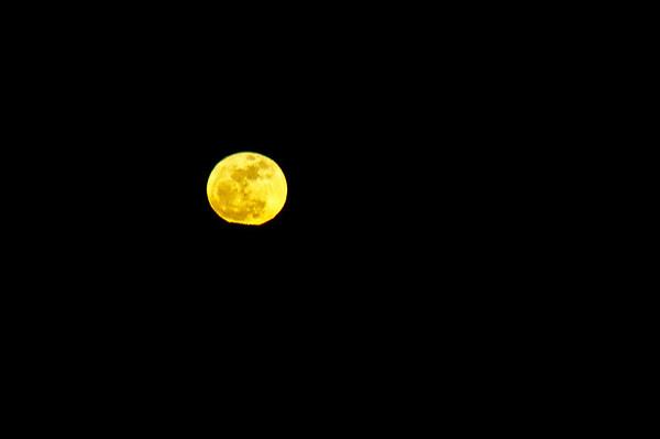Super Moon - March 19, 2011