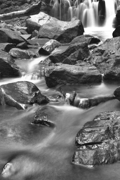 Black & White Photos