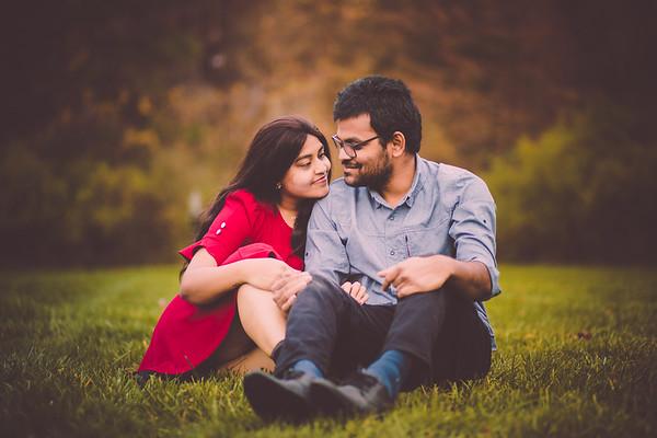 Sindhu+Praveen Pre-wedding
