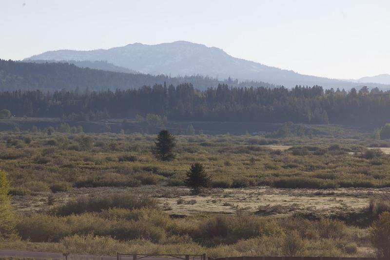 Landscape19.jpg