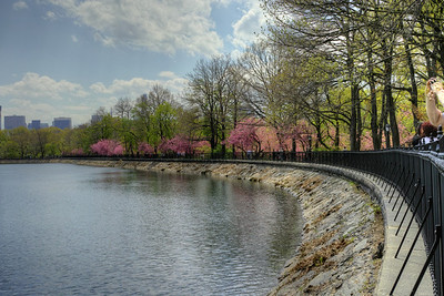Central Park May 2014