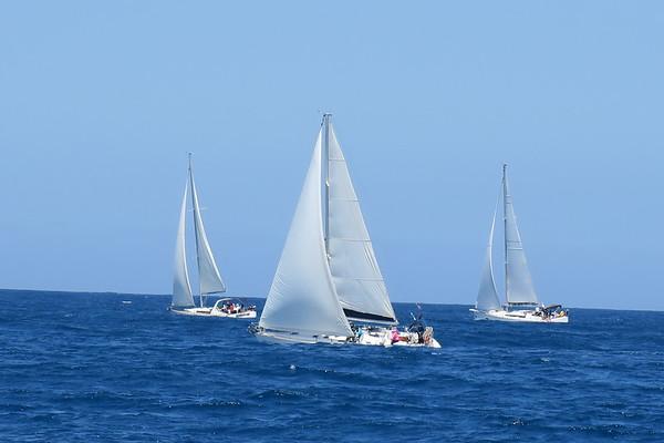 Yacht 7